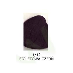 Farba do włosów Allwaves 100ml   1.12 fioletowa czerń