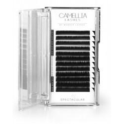 CAMELLIA LASHES SPECTACULAR