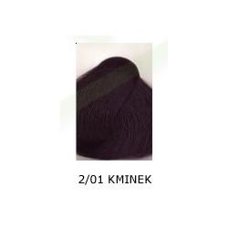 Farba do włosów Allwaves 100ml 2.01 kminek